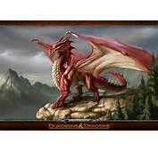 Dungeons &amp Dragons « Mirpgcom