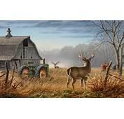 Animals Tractors Wallpaper 1920x1200 Artwork