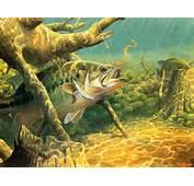 Fish R Bass Fishing Wallpaper