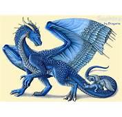 Saphira  Eragon Photo 327564 Fanpop