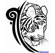 Draw A Tiger Tattoo Design Step By Tattoos