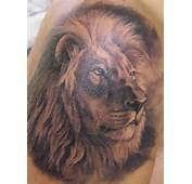 Grey Ink Lion Head Animal Stylish Tattoo  Tattooshuntcom