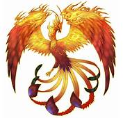 Mythical Creatures Images Phoenix HD Wallpaper And Background Photos