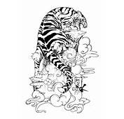 Com Img Src Http Www Tattoostime Images 73 Flowers And Tiger