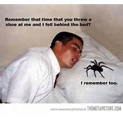 26 July 2012 In Funny  Pictures Comment