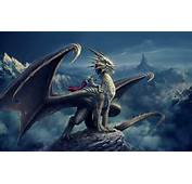 Dragon Rider 1 Wallpapers Pictures Photos Images