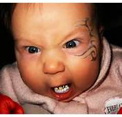 Survive And Thrive With Fat Baby Grills Lazy Pills  Health