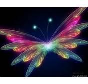 3D Butterfly Wallpaper  Butterflies 31063788 Fanpop