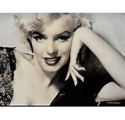 Monroe Images Marilyn HD Wallpaper And Background Photos 979546