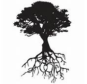 Oak Roots Wall Decals  Dezign With A Z