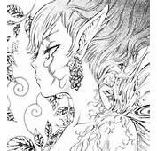 Fairies For Adults Colouring Pages