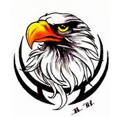 Tatto Designs We Are Offering You The Latest Of Tattoo