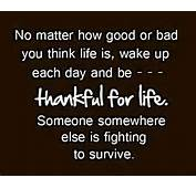 Quotes Of The Day  Shers Other Blog