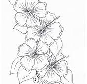 Flower Drawing Coloring Page Hibiscus