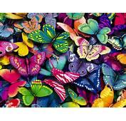 FONDOS DE PANTALLA Wallpapers