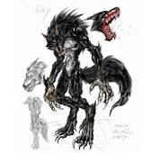 World Of Wolfs And Werewolfs Images Werewolf HD Wallpaper