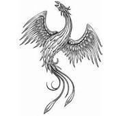 Phoenix Tattoos For Women  Japanese Tattoo Designs
