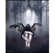 Ayshas Wonderland Quotes About Fallen Angels By Lauren Kate
