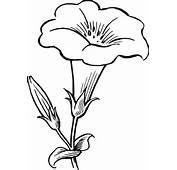 Flower Lineart Clip Art At Clkercom  Vector Online Royalty