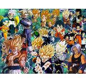 Dragonball Z  Dragon Ball Wallpaper 482833 Fanpop