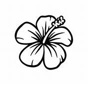 Flower Tattoo Idea  Tattoos Pinterest Hibiscus
