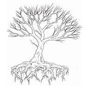 Tree Drawing With Roots Tattoo Images &amp Pictures  Becuo