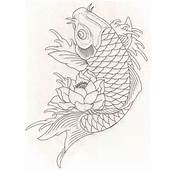 Fish Drawing  Future Pinterest Koi Drawings And