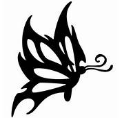 Tatuaggio Farfalla Bianco E Nero Con Antenne  Tatuami Cosi