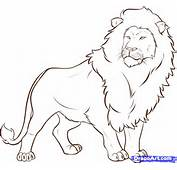 How To Draw A Lion Step 6