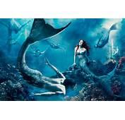 Ariel  Mermaids Photo 30330066 Fanpop
