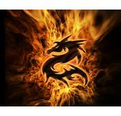 Dragons Fire Purity  $600 Heather's Heavenly Vapes Top