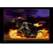 Ghost Rider  Photo 2756578 Fanpop