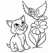 Activity For Kids Coloring Pages Kitten