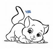 Logo Postarei Mais Gatinhos