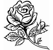 Dibujos Para Pintar En Tela Flores  Rosa Recortar Y
