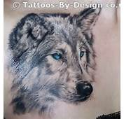 Wolf And Feathers Tattoo