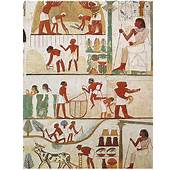 Agricultural Scene From The Tomb Of Nakht 18th Dynasty Thebes