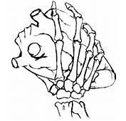 Skeleton Hand Holding Heart By GigglesChook On DeviantArt