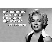 Ever Notice How What The Hell Is Always Right Answer  Marilyn