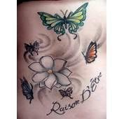 Nice Jasmine Flower Tattoo Pictures