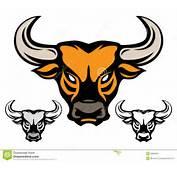 Bull Head Stock Image  28986551