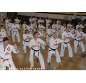 Karate Dokung Fulondrinacuritibablumenaujoinvilleflorianópolis