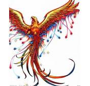 Download Phoenix Tattoo Design By Picture 3063