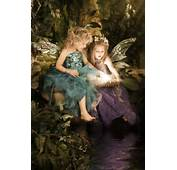 Enchanted Fairies Photography Studio  Childrens Storybook
