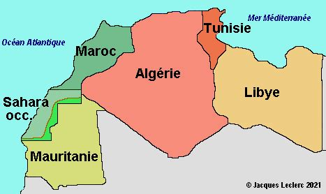 MBC Maghreb Television image 9
