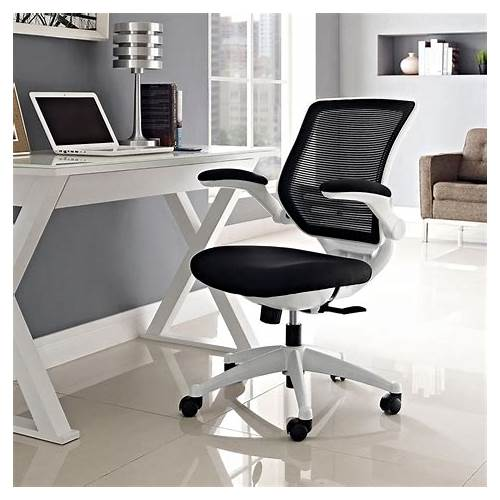 Black and White Modern Office Chair office design & decor ideas gallery