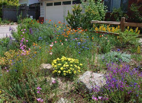 California Native Plant Garden Design garden design & decor ideas gallery