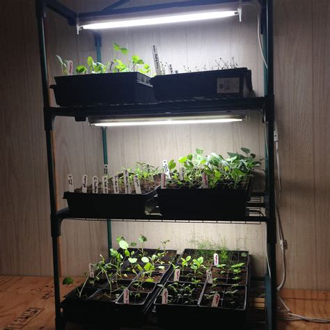 Greenhouse Indoor Garden Lights