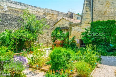 Medieval French Garden garden design & decor ideas gallery