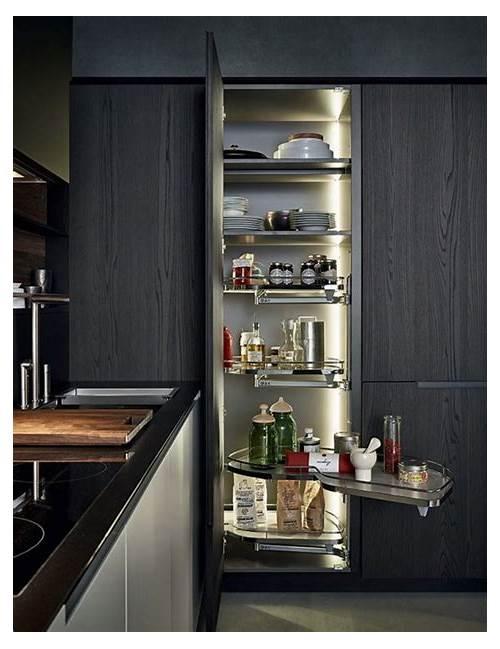 Modern Kitchen Pantry Cabinets kitchen design & decor ideas gallery